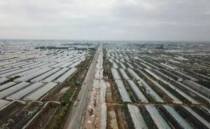 新华社调查:寿光大棚损失惨重,农民为何之前不买保险?