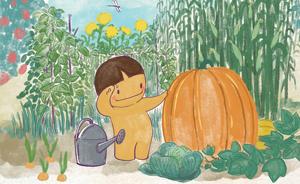 节气村的故事|秋分的菜园子闯入不速之客