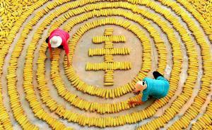 中國農民豐收節來了!習近平:這是一件影響深遠的大事