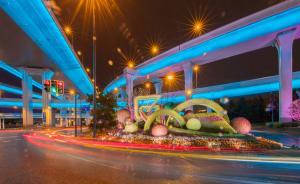 進博會·圖集|道路與行車交織流光,虹橋城市綠雕亮燈溢彩
