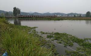 晚坪村母子溺亡事件:被策劃的車禍與意料外的死亡
