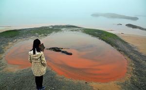 报告称中国海水水质状况整体改善,近岸局部海域污染较严重