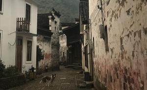 美丽乡村 | 桐庐,关于乡村慢生活的一场具象化实验