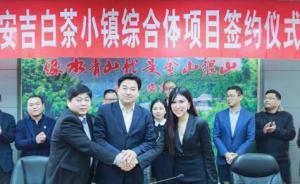 上海爱家60亿打造安吉白茶小镇