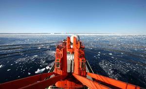 高清大图丨雪龙号记录南极西冰架的冰山与动物世界