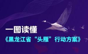"""黑龙江省""""头雁""""行动方案发布:团队支持经费可达五千万元"""