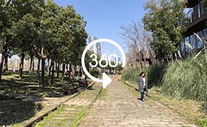 360°全景|綠溢上海:駕車也能感受徐匯濱江的小心思