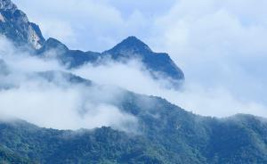 保护秦岭生态,西安将限期关停退出36座小水电站