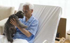 痛失爱犬陷抑郁的老年人,拿什么来拯救你?