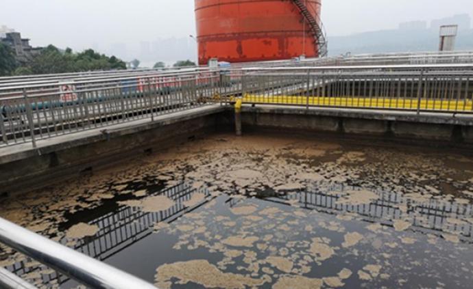 泸州老窖被中央环保督察组点名:酿酒基地污水渗排超标