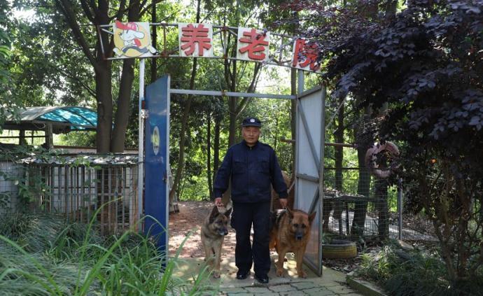 杭州一民警为26条警犬建养?#26174;海?#35753;它们有尊严地过完这一生