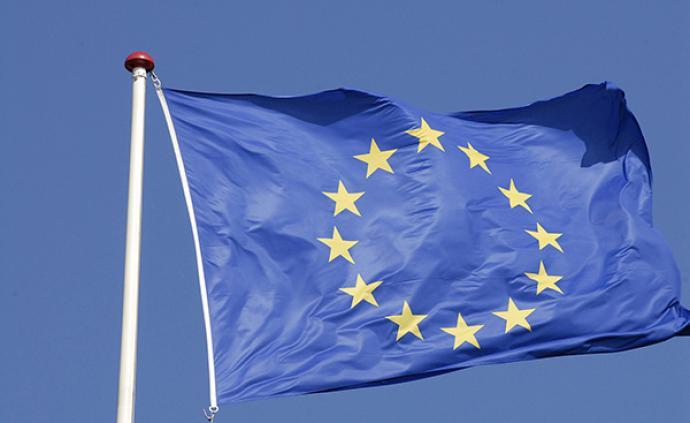 歐洲議會選舉初步結果:除了極右翼,中間派和綠黨也表現強勁