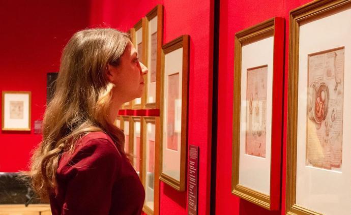 達·芬奇素描倫敦展出,是線條的一生,也是驚喜不停的一生