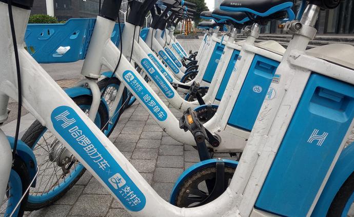 锦州:哈啰单车私入市场违规,但出租车司机私自清理也是错误
