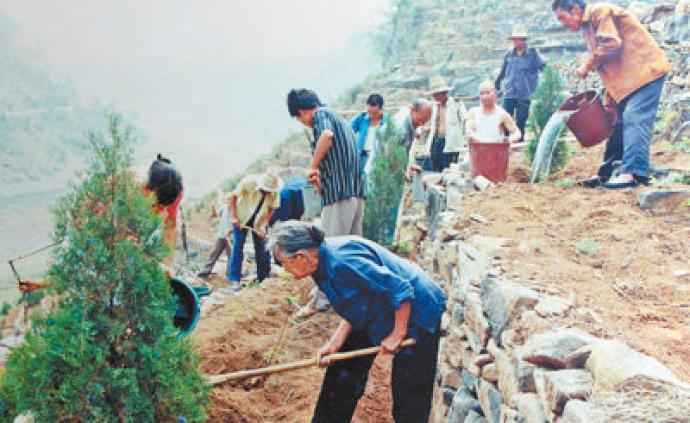 暖闻|九旬老太祖孙四代绿太行:35年接力种下20多万棵树