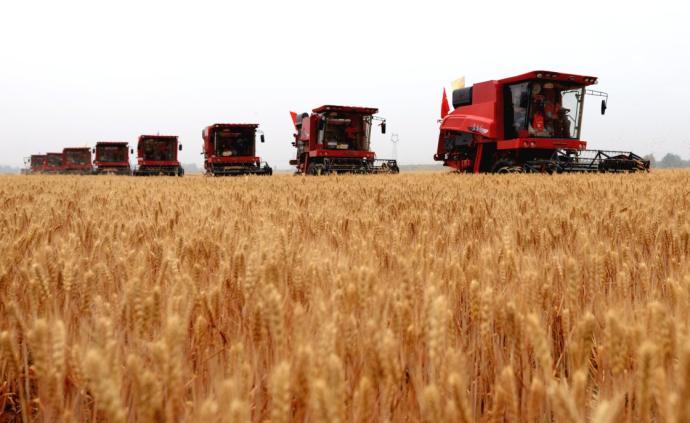 国家粮食和物资储备局:粮食年工业总产值突破3万亿元