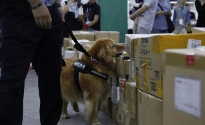贩毒女子冒充孕妇用尿检蒙混过关,上海警方通过血检发现真相