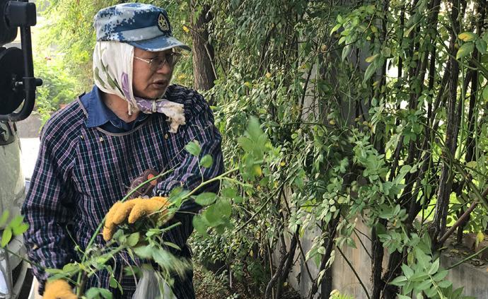 固守戰場:網絡輿論圍困中的日本農人川崎廣人