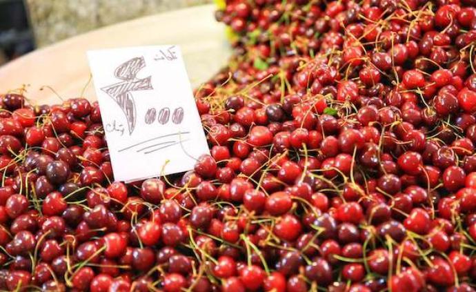 吃在伊朗:一场穿越时光与丝路的舌尖冒险