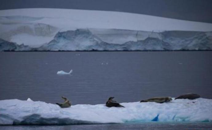 专家:因全球变暖,南极气温零上天数或增一倍破百天