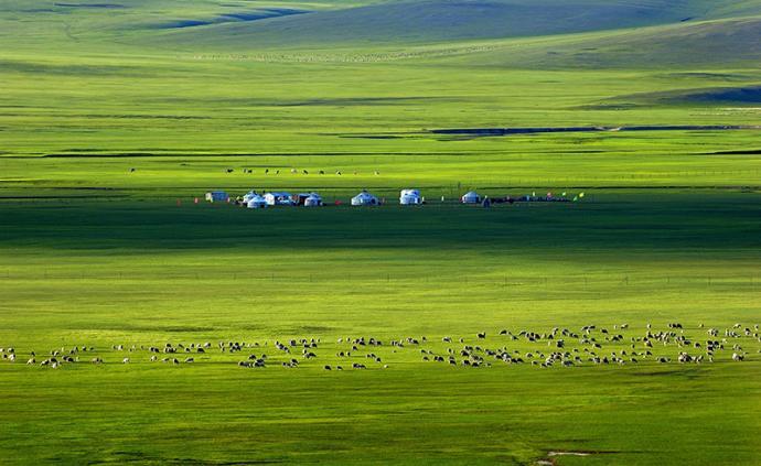 內蒙古:計劃建設五大奶源基地,到2025年奶類產量千萬噸