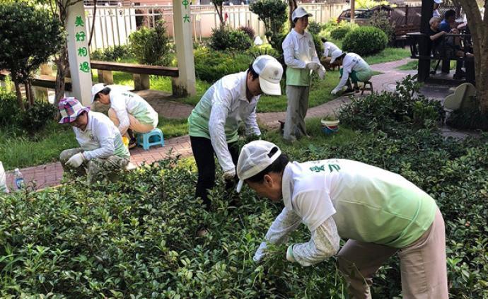 社區更新·展|上海中大居民區②:從農村生產隊到小區花友會