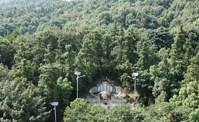湖南专题研究曾国藩墓保护管理工作,已责成调查组实地调查