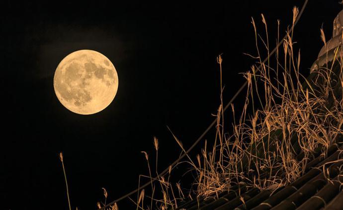 芋艿、毛豆、踏月亮,那些忘不了的中秋记忆