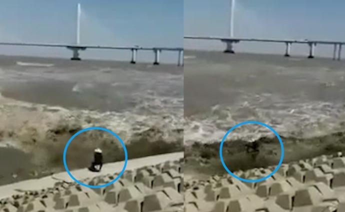 男子观钱塘江潮被卷走,又被拍上岸