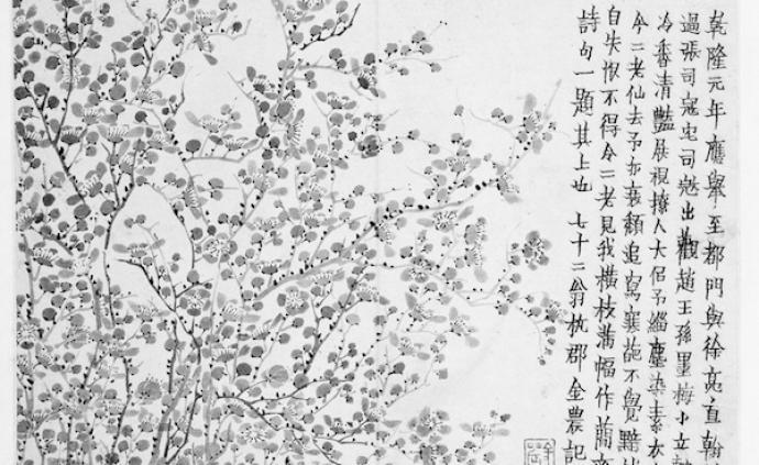五十始学画,金农的习古出新与梅花情怀