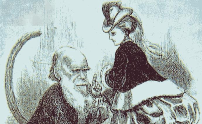 """達爾文的""""進化論""""如何導向叢林法則?"""
