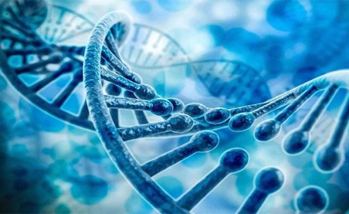 中国建成首个志愿军烈士DNA数据库,陈旧遗骸鉴定技术突破