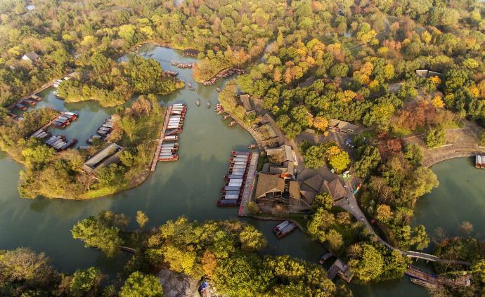 馬云捐款1億元保護西溪濕地:要打造得像紐約中央公園