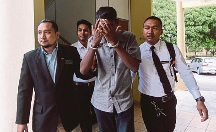 马来西亚根据动物福利法首作判决,用烘干机虐猫男子被判监禁