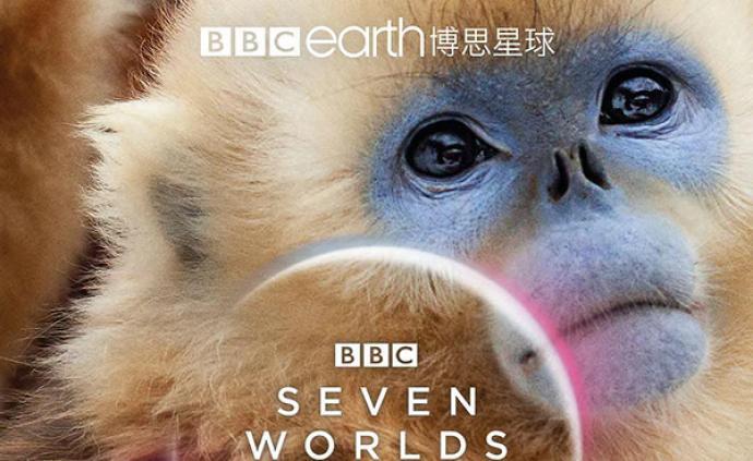 不只是《七个世界,一个地球》,这些高分纪录片也上线了