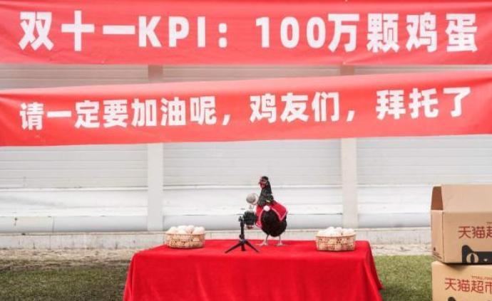 """南通一養雞場辦""""雙11誓師大會"""":定KPI產百萬顆雞蛋"""