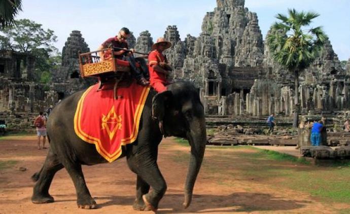 2020年起,吳哥窟禁止騎大象