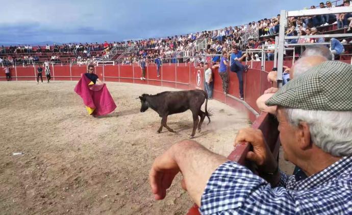 隱藏的伊比利亞③:從國家公園到斗牛場,人和動物該如何相處