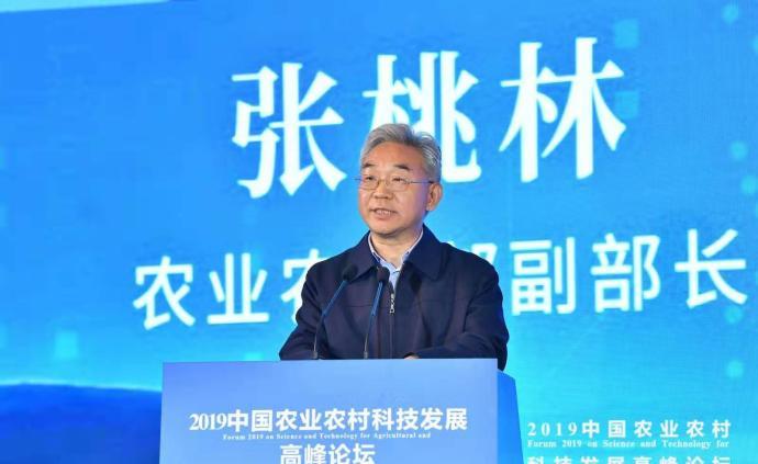 農業農村部副部長張桃林:明年全國有望達到8億畝高標準田