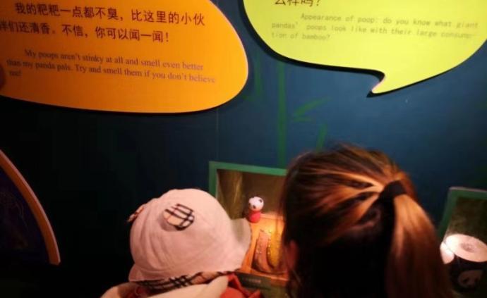 武漢動物園展示大熊貓糞便:能隱約聞到竹子清香,免費科普