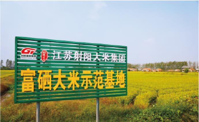 圍繞大米打造千億級產業集群,射陽大米瞄準全國市場