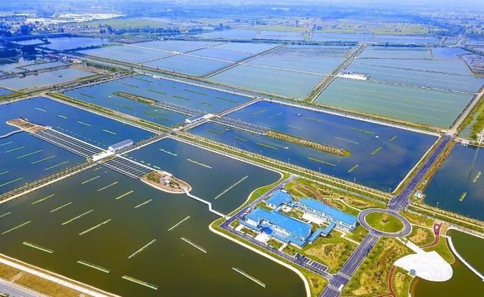 鹽城農產品區域公用品牌將在上海揭曉