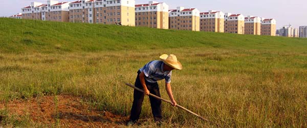 贺雪峰:周其仁到底有没有农地问题的常识