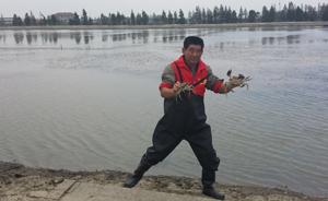 又见大闸蟹,吃货们能吃出螃蟹的产地吗?
