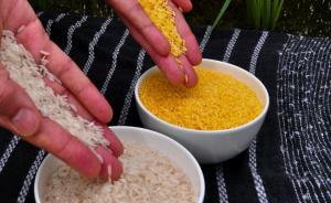 前北大校长:黄金大米对全球儿童有益