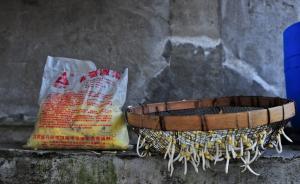 """豆芽行业商定世界最严格标准,为""""毒豆芽""""正名仍遇诸多难题"""