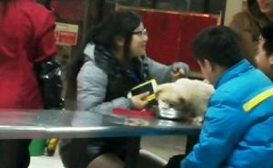 江西一高校就餐人员用食堂餐具喂狗激众怒,校方:收缴宠物狗