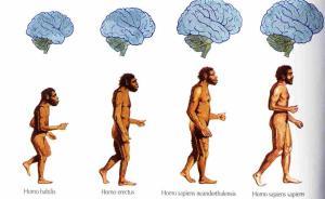"""转基因不是恶魔,其实人类也是""""转基因人"""""""