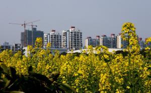 3月百城房价同比跌幅扩大,杭州重庆比去年降了10%
