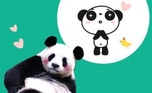 中国网络电视台首播大熊猫自然交配实况,普及熊猫繁育的不易